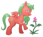 Mlp new generation - Star floret