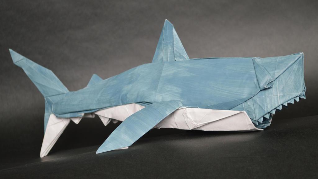 White Shark By Manilafolder On Deviantart