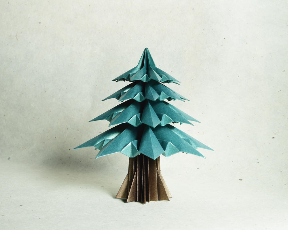 Fir Tree by manilafolder