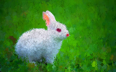 Bunny PsykoPaint