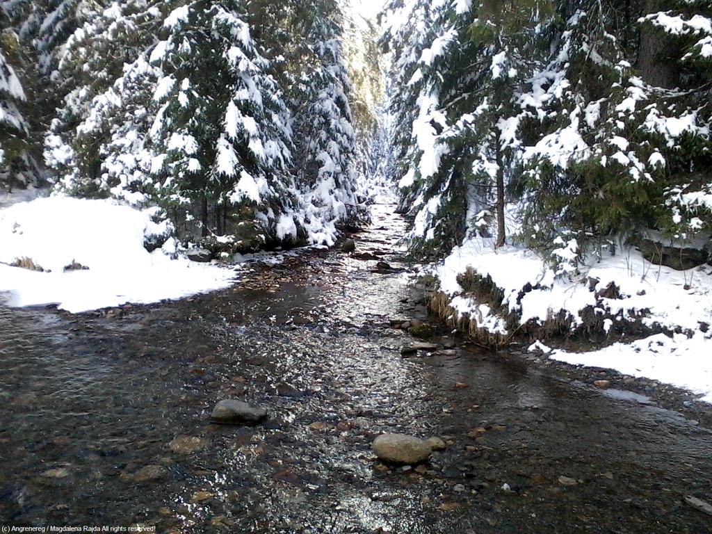 River by Angrenereg