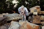 Fallen Angel IV by CrowsReign-Stock