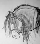 Tyrik sketch