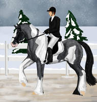 WPF Winter Show- Blues Dressage by Revolver-Waffle