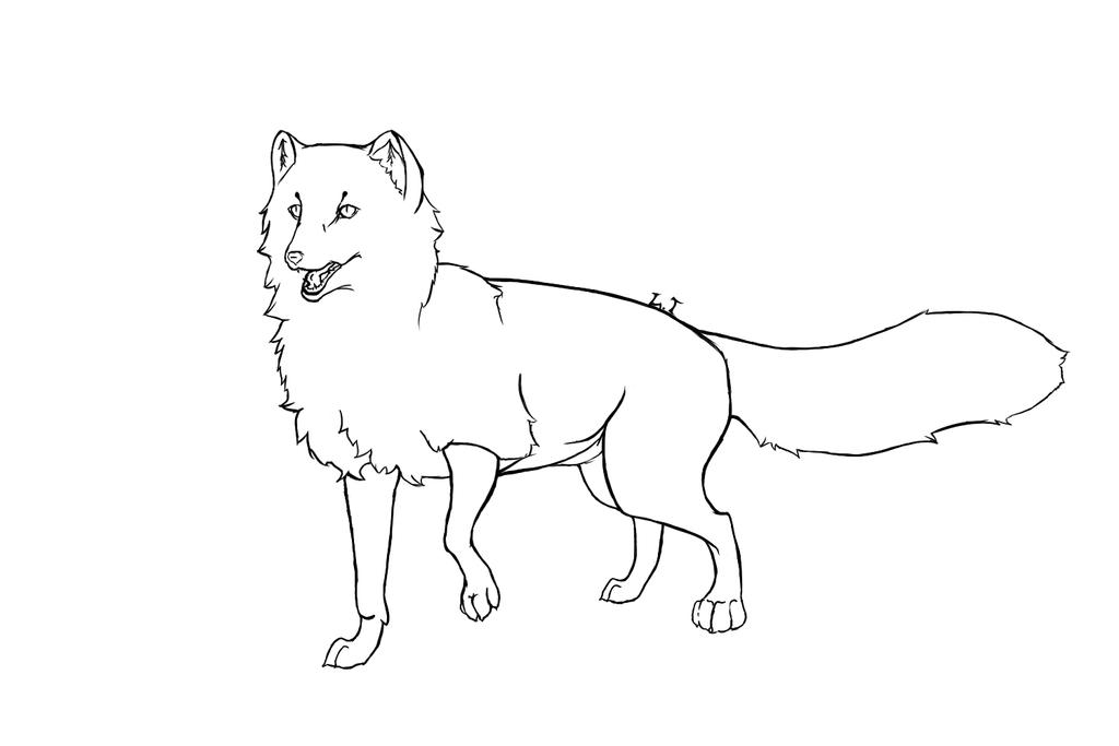 how to draw a cartoon arctic fox