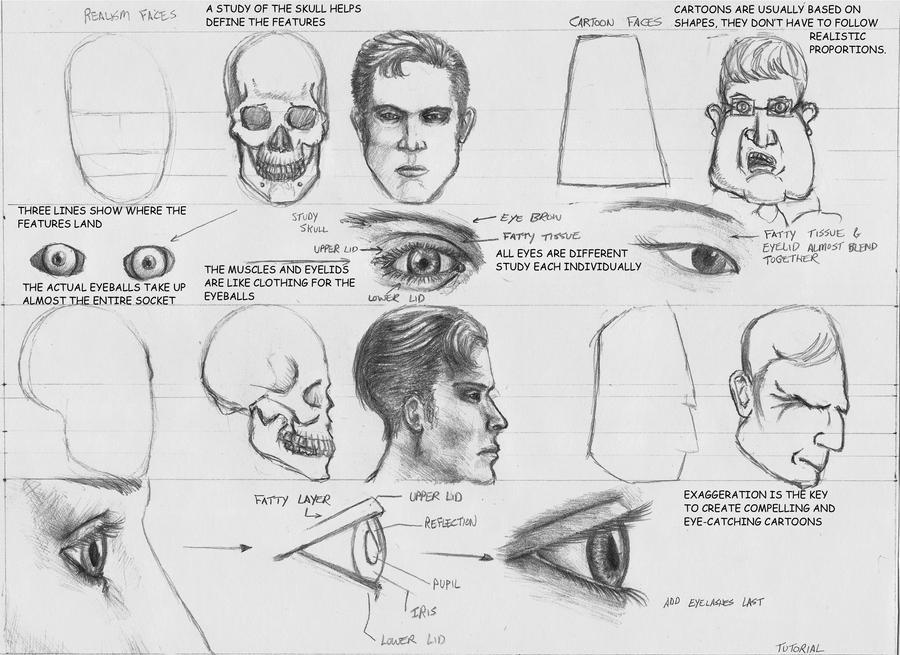 Human Face Tutorial By Grimdrifter On Deviantart