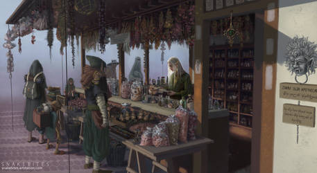 The Apothecary's shop by KipiMichaelis