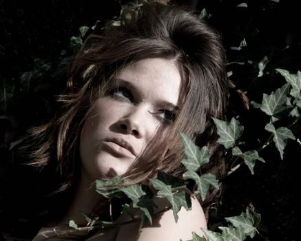 Poison Ivy 5