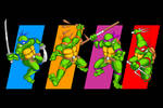 Turtles in Time!