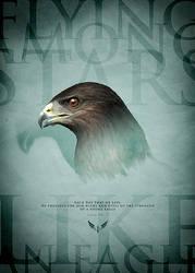 Flying like an eagle