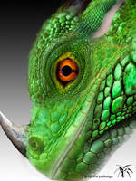 green dragon head by Shiryuakais