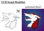YCH Sergal Headshot