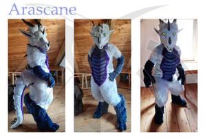 Arascane Fullsuit