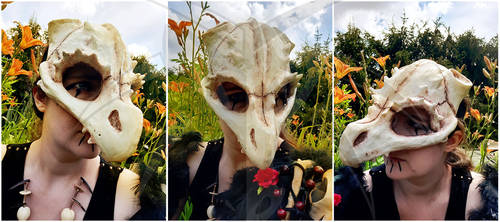 Dragonskull Halfmask
