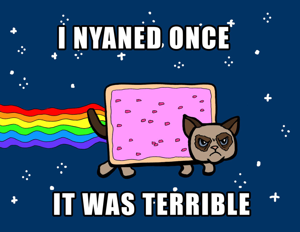 Grumpy Nyan Cat with caption by rockie-squirrel