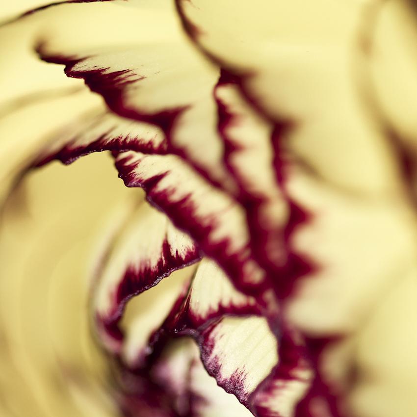 Turbulences by Karine-Despeaux