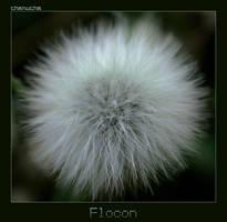 Flocon by Karine-Despeaux