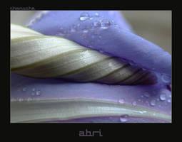 Abri by Karine-Despeaux