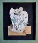 Planning white roses