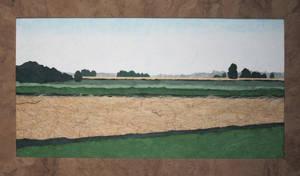 Stripey fields