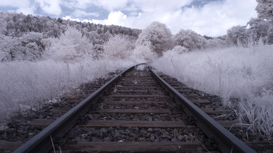 On Rails by jant-photo
