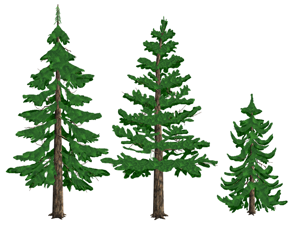 pine trees by tyke44060 on deviantart pine cone clipart for headstone pine cone clip art free
