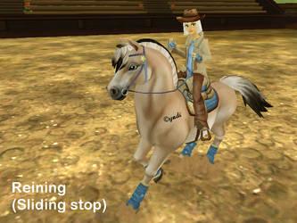 Western Reining Sliding stop by Saiyoe