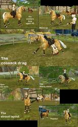Trick riding by Saiyoe