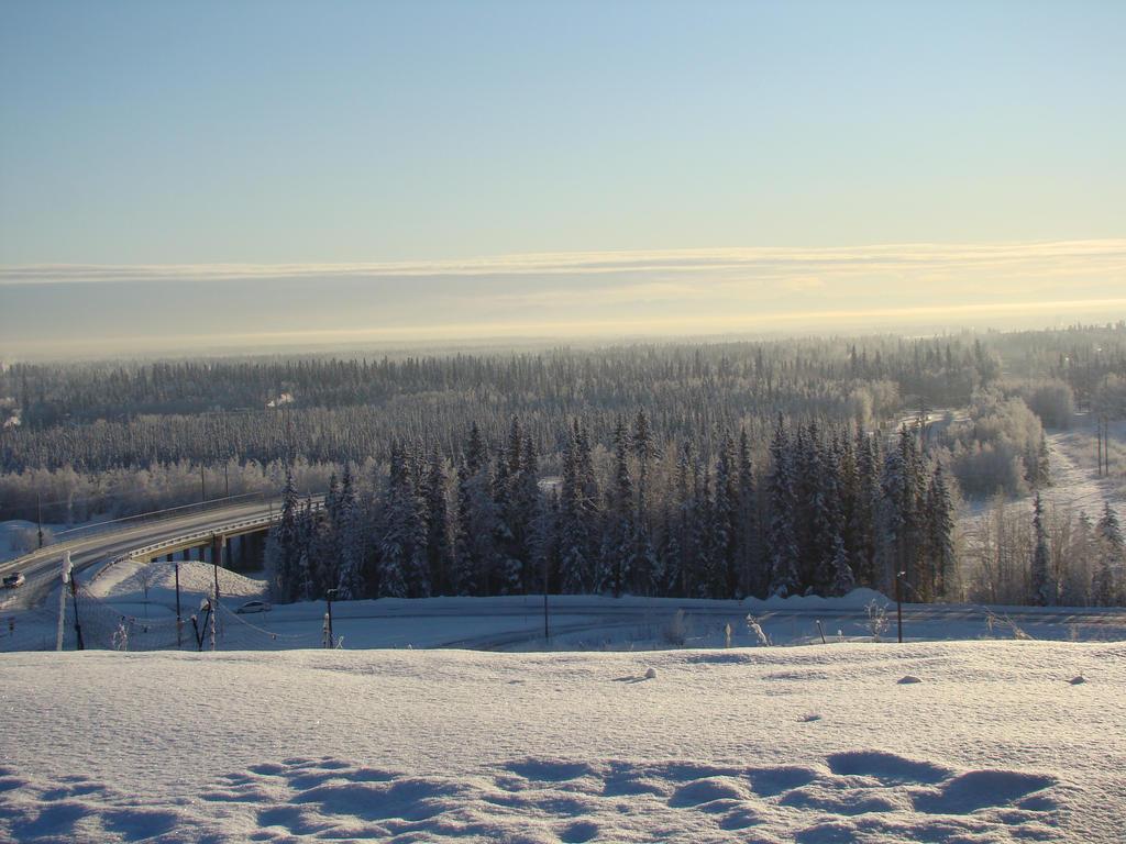 Winter Wonderland by Maxojir