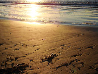 Sea Washed Sand at Sunrise by Maxojir