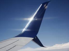 Shining Scimitar Wingtip