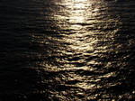 The Water the Light and the Dark