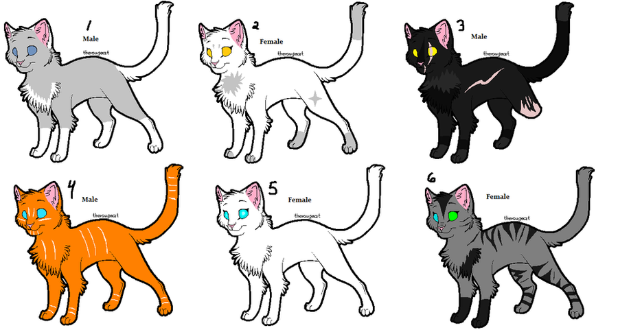 Warrior Cat Name Ideas Adoptables 3 By