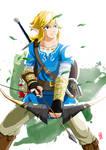 Link - The legend of Zelda Breath of the Wild