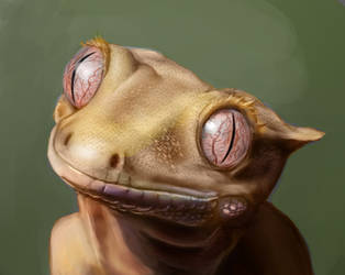 Lizard Study-cropped by Faitle