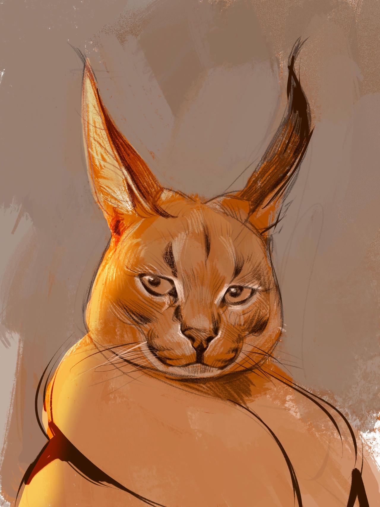 feral_cat_by_lofilife_ddu0sot-fullview.jpg
