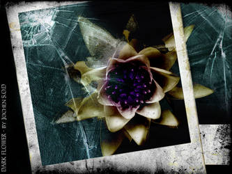 DARK FLOWER by Jochen-SOD