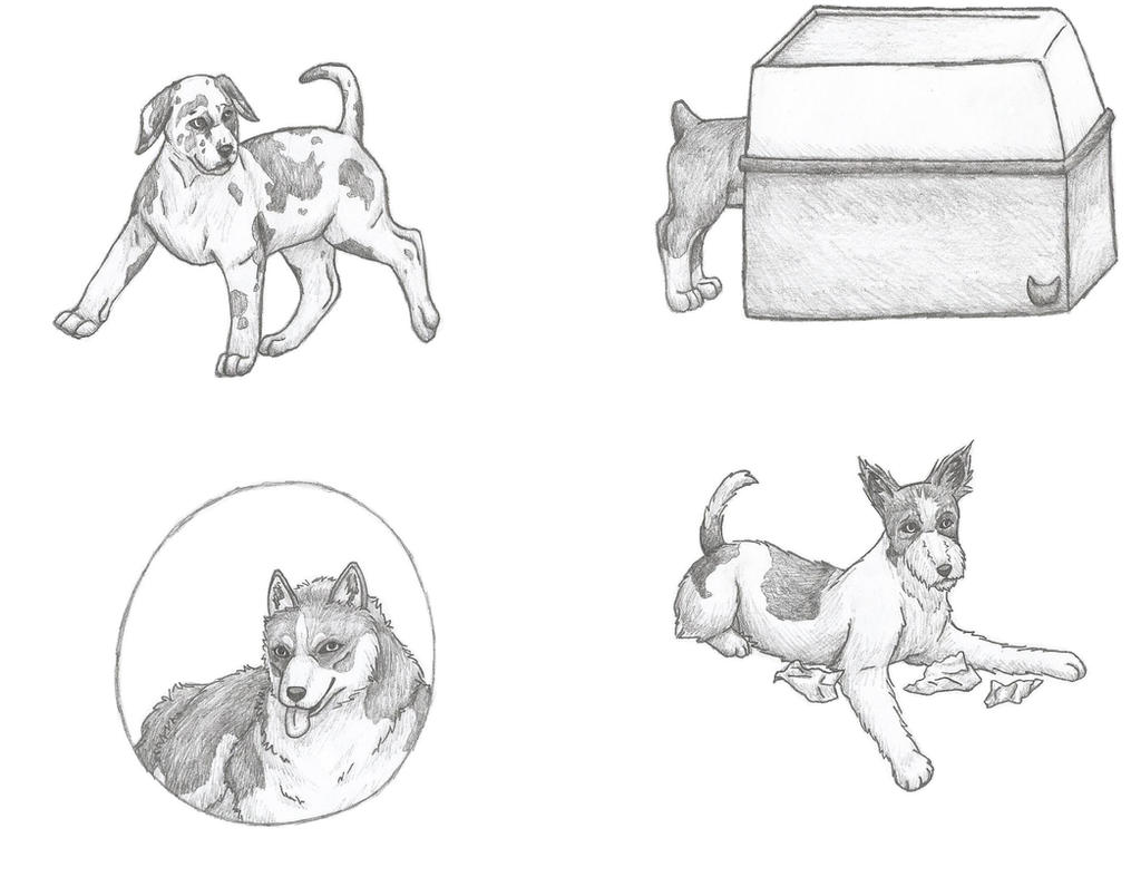 Dog Levi X Reader Deviantart: Mike Zacharias By Jonndraw On