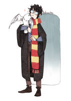 Harry Potter and Hedwig by RoItsSomething