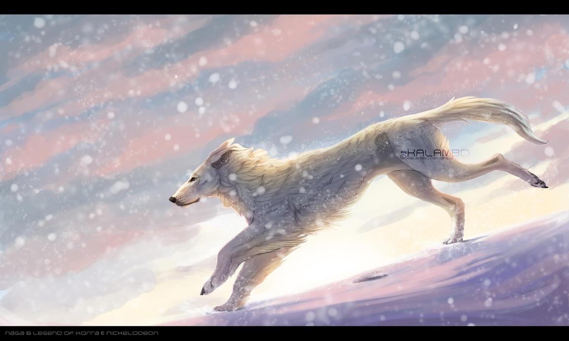 Snowdrifts by kalambo