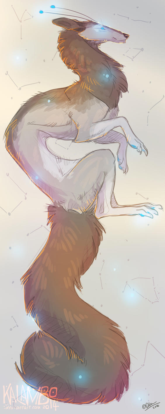 Cosmos by kalambo
