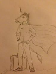 Mr. unicorn