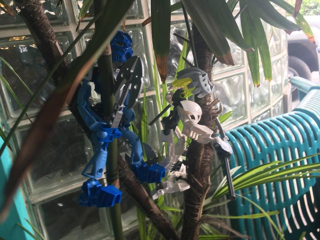 Tree Climbing VI by bluerosekatie