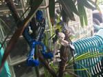 Tree Climbing VI