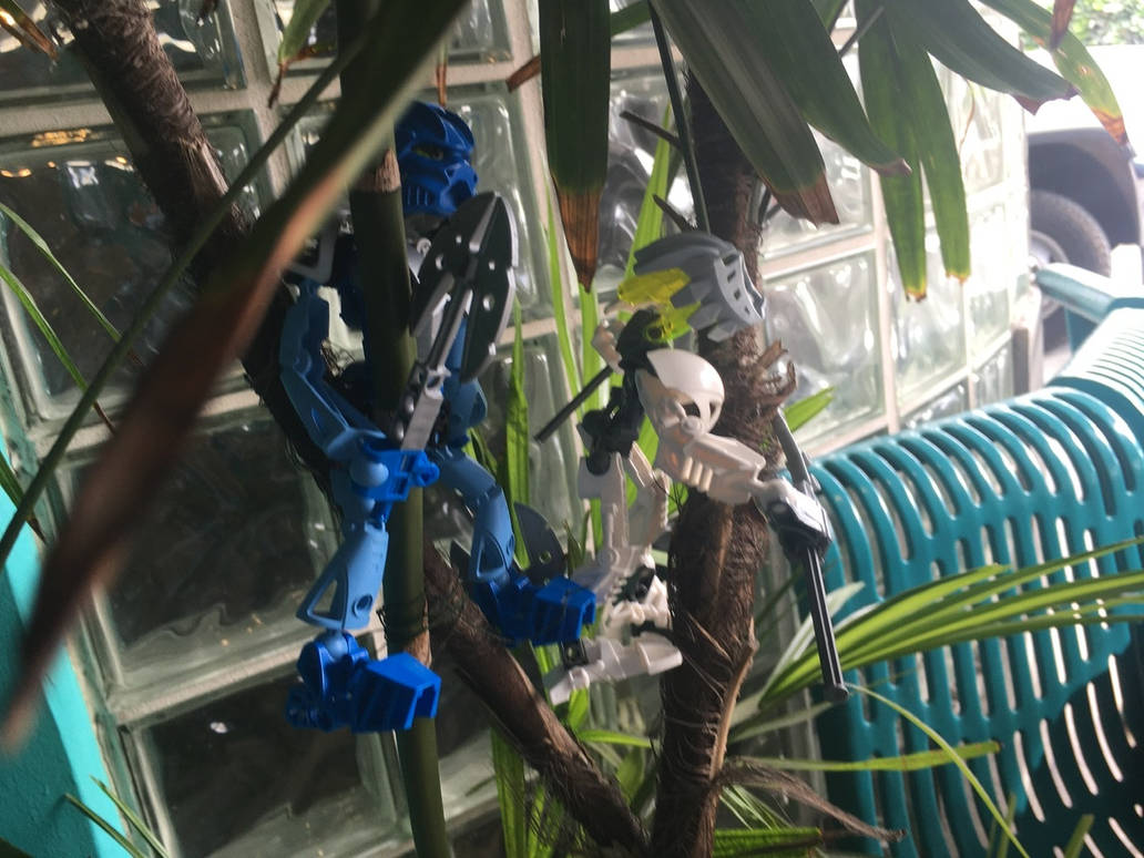 Tree Climbing V by bluerosekatie