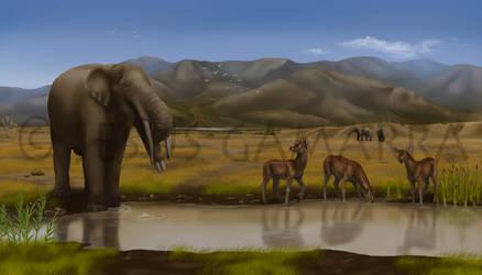 Humera fossil site by jesusgamarra