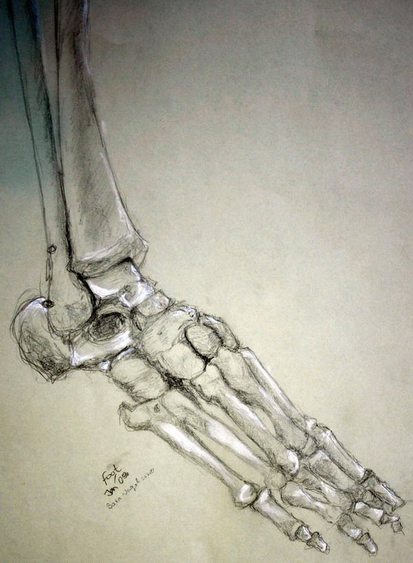 Skeleton Foot By Kouyukki On Deviantart