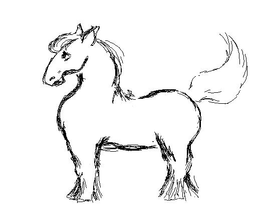 Pony by net-uash