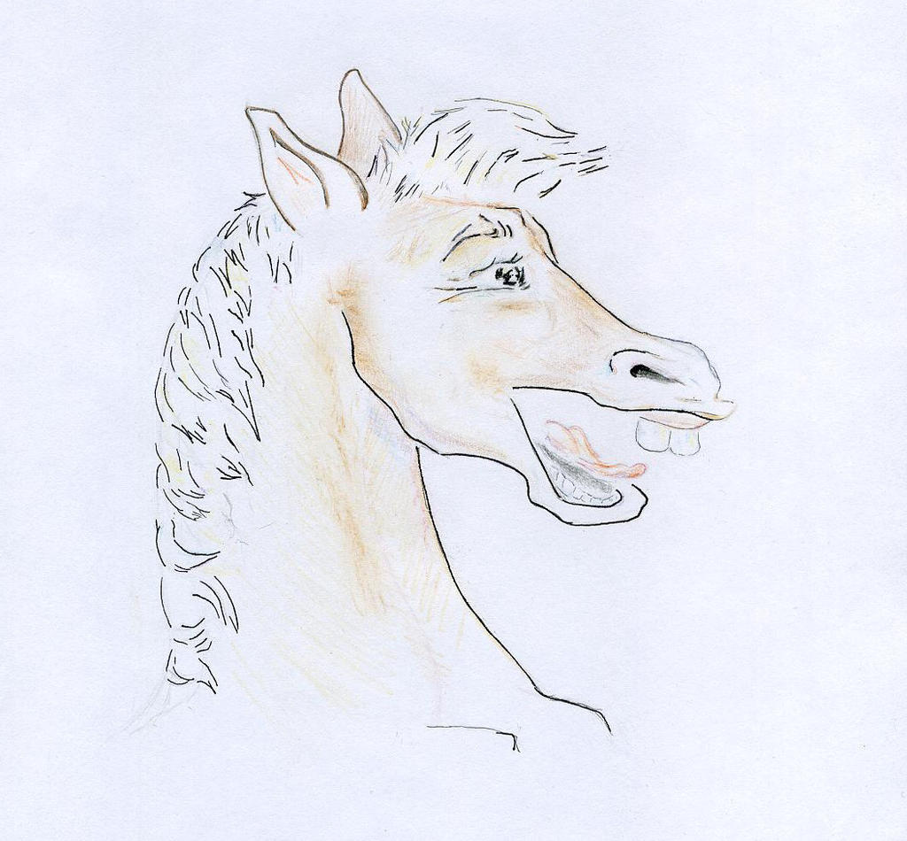 Laughing Horse by net-uash
