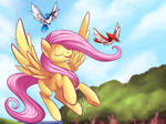 Flying and singing